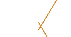logo-crise-white